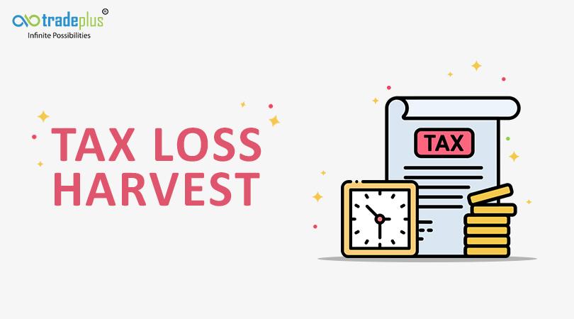 tax Tax Loss Harvesting